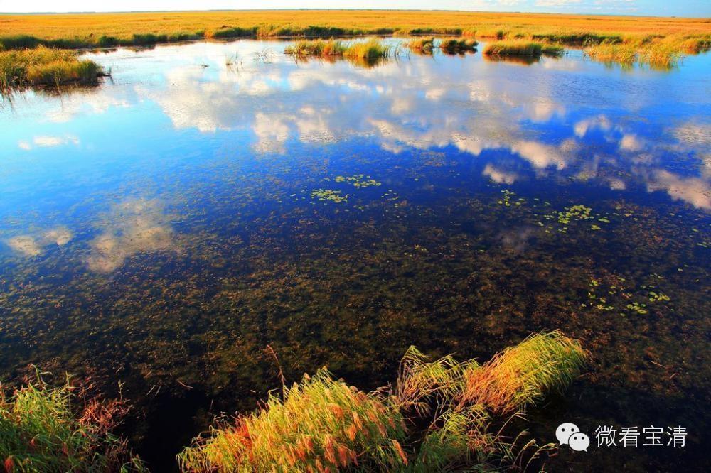 千古神韵大湿地